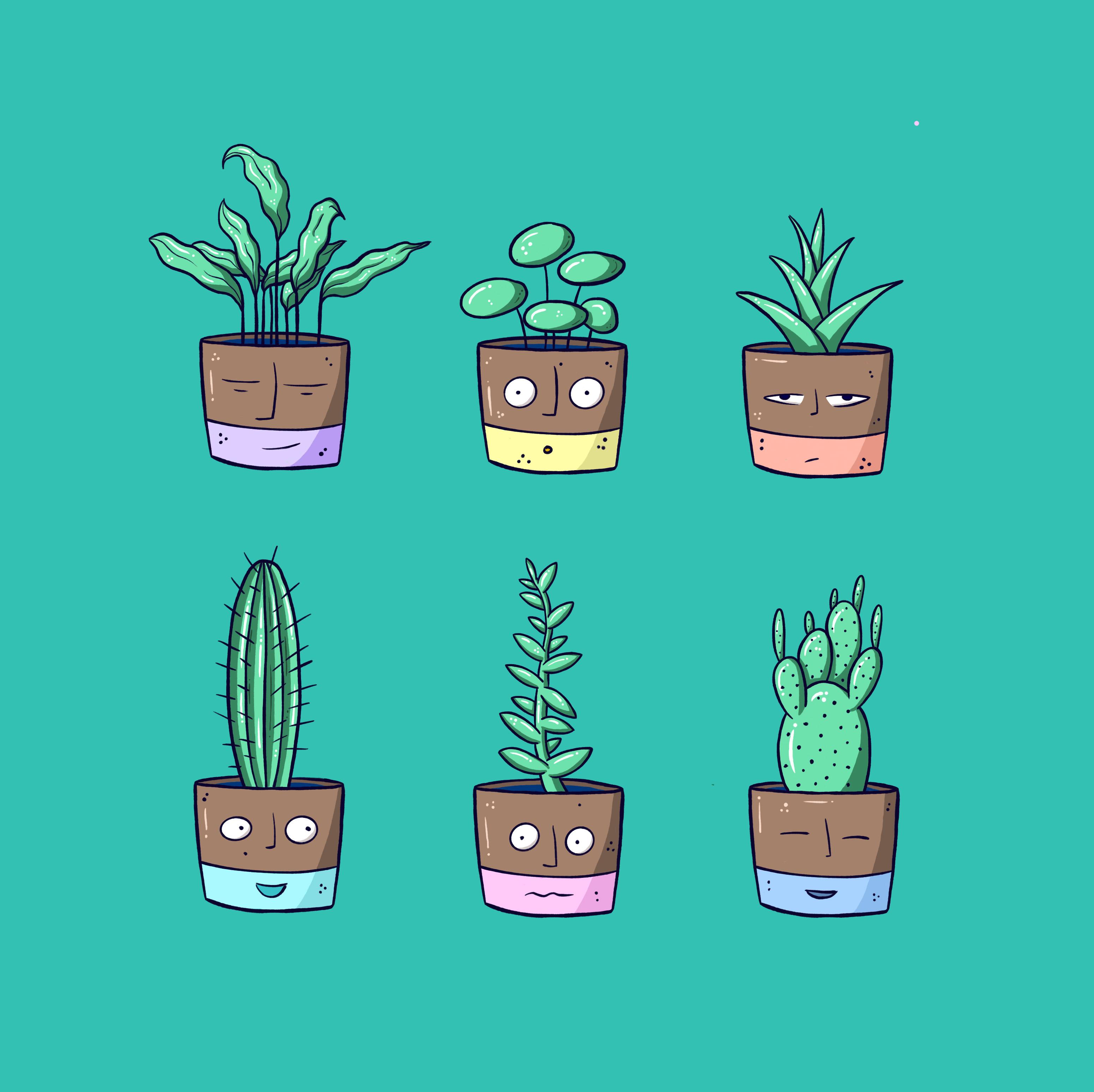 illustratie cactus